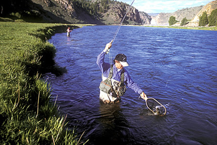 Crested butte colorado for Gunnison river fly fishing