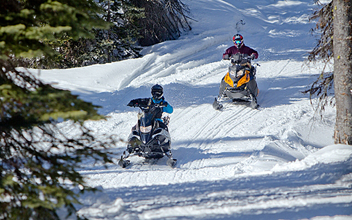 Golden, BC snowmobiling